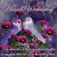 3171 best daily blessings and greetings images on