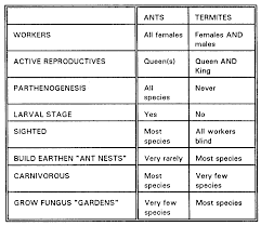 field guide to the native plants of sydney ants of southern africa