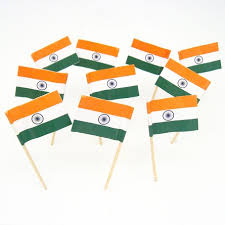 Indian Themed Party Decorations - indian flag toothpicks india theme party decorations u0026 supplies