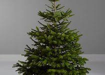 real looking trees artificial decor inspirations