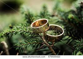 american swiss wedding rings specials wedding rings american wedding rings american swiss wedding