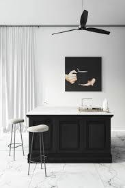 Black And White Kitchens 241 Best Innovative Kitchen Designs Images On Pinterest