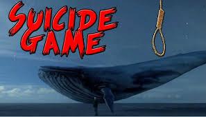 Challenge Yahoo Blue Whale Challenge Yahoo Receive Delhi Hc