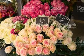 roses for sale roses for sale in flower shop stock photo 524525154 istock