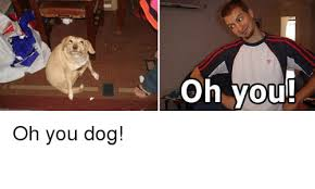 Oh You Dog Meme - sp oh you dog meme on me me