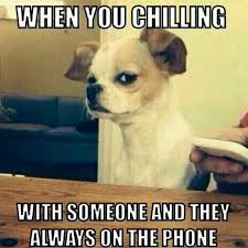 Funny Phone Memes - you are chilling w someone and they are always on the phone
