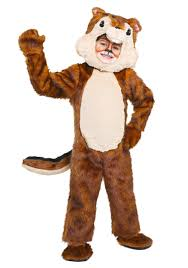 Chipmunk Halloween Costume Results 421 480 660 Kids Animal Costumes