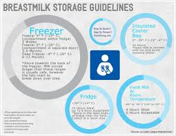 Formula Milk Storage Containers The Best Breast Milk Storage Bags Babycare Mag