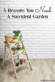 223 best diy gardening images on pinterest