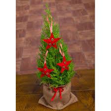 pot plant christmas tree christmas lights decoration