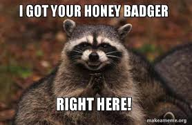 Honey Badger Meme - i got your honey badger right here evil plotting raccoon make a