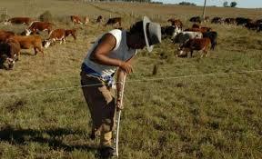 uatre nueva escala salarial para los trabajadores agrarios nueva escala salarial de los trabajadores agrarios diario el