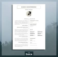 best 25 english cv template ideas on pinterest cv english