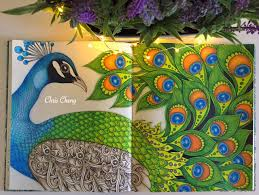 dagdrömmar coloring book the peacock coloring with colored