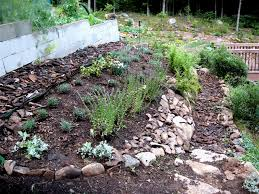 vegetable garden mulch picture should i use wood chips for
