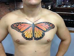 amazing butterfly chest by marcella adrenaline
