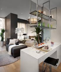 small studio apartment design small pillows glass wall glass wall