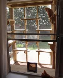 the cat carpenter compact catio