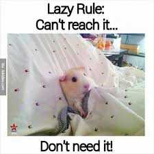 Lazy Meme - lazy rule