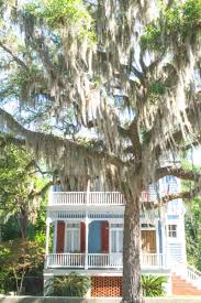 Lowcountry Homes Beaufort South Carolina Travelogue