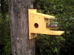 hummingbird houses plans build hummingbird house plans home design and style