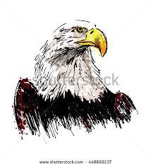 eagle sketch stock images royalty free images u0026 vectors