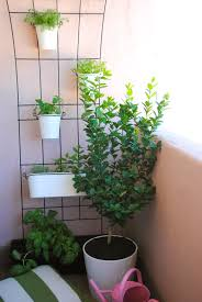balcony herb garden home design ideas