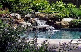 swimming pools archives clc landscape design