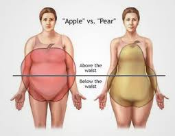 Human Belly Anatomy Everything You Need To Know About Belly Fat And Its Dangers Lean