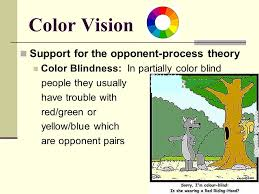 chapter 5 sensation and perception list the five senses below ppt