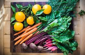 Florida Vegetable Gardening Guide by Florida Seasonal Fruits U0026 Vegetables Guide