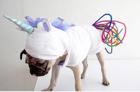 Halloween Unicorn The Best Diy Dog Costumes For Halloween Pedigree Foundation