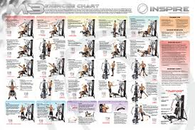 Bench Press Workout Routine Chart Weider Crossbow Exercise Chart Download Real Fitness