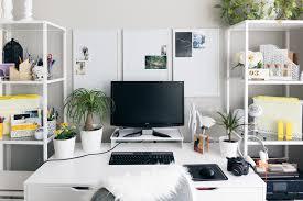 plantes bureau au bureau aussi j ai mes plantes fétiches jardiner en ville