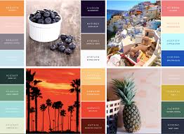 canva color palette ideas eye popping reader stopping visual marketing