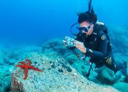 padi open water course in tenerife with aqua marina 5 dive centre
