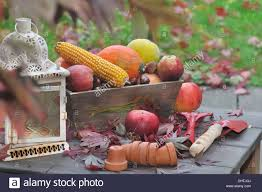 fall fruits and vegetables on table with tools and small pots