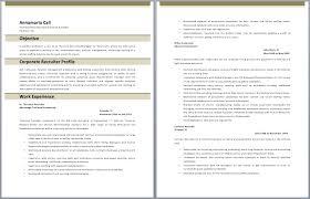 Bilingual Resume Sample Download Bilingual Recruiter Resume Haadyaooverbayresort Com
