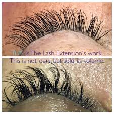 professional eyelash extension the lash extension