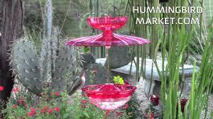 Jewel Box Window Hummingbird Feeder Aspects Humm Blossom Feeder With Accessory Kit Youtube