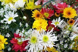 memorial flowers file memorial flowers jpg wikimedia commons