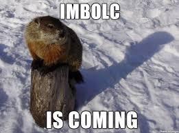 Groundhog Meme - gifs and memes imbolc is coming meme groundhog on tree stump shadow