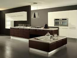 wood kitchen cabinets online modern kitchen white modern kitchens aster cabinets dark wood