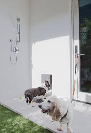 Guest Bathroom Shower Ideas Elegant Outdoor Cat Enclosure In Laundry Room Midcentury With