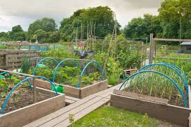How To Make A Raised Vegetable Garden by How To Construct Raised Beds Raised Deep Bed Growing