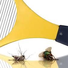 moucherons cuisine 30 nouveau table de cuisine avec plante anti mouche et