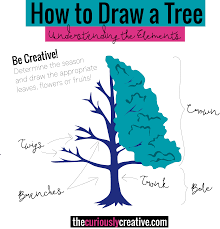 how to draw a tree the curiously creative