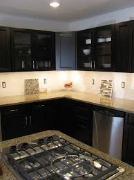 Kitchen Cabinet Features Cute Led Kitchen Cabinets Lights Come With Brown Wooden