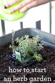 garden design garden design with how to start an indoor herb