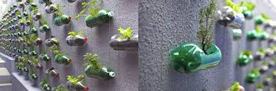mini indoor garden ideas to green your home architecture blog